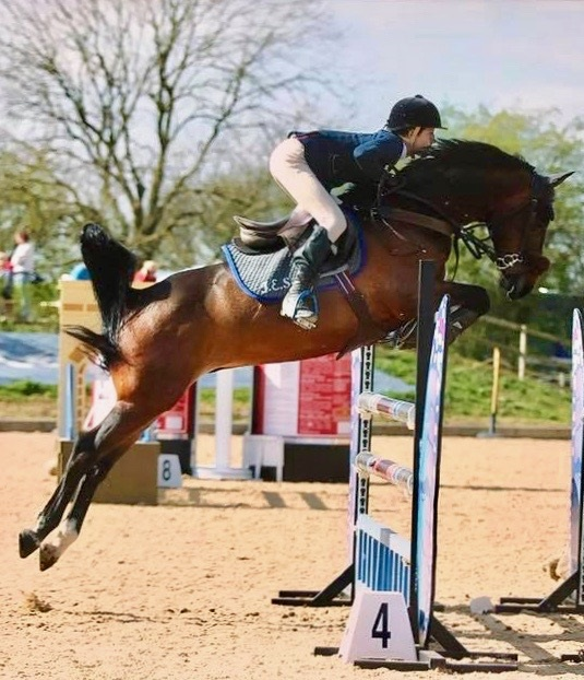 Expat Morgans leading sport stud farm in Europe